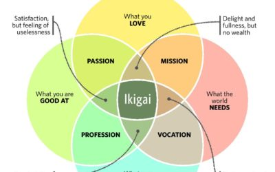 The designers guide to Ikigai